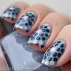 Blue dotticure 3