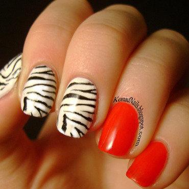 Zebra nail art nail art by KonadAddict