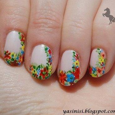 Kwiatki   1  thumb370f