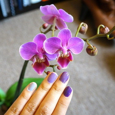 Radiant orchid ombre nail art by Lynn