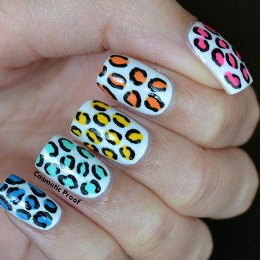 Rainbow leopard3 thumb370f