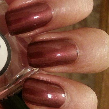 Sassy Cats Lacquer Fine like Wine Swatch by Mohrayma C.
