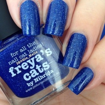 piCture pOlish Freya's Cats Swatch by Giovanna - GioNails