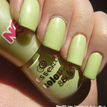 Essence Colour & Go Hello Spring! Swatch by Maria