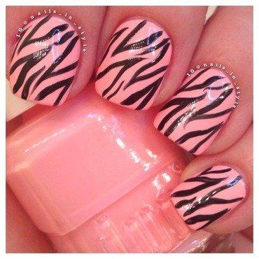 Zebra on call me maybe thumb370f