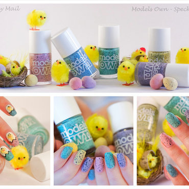 Models Own Duck, Models Own Swan, Models Own Goose, Models Own Dove, and Models Own Magpie Swatch by The Naily Mail