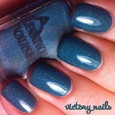 Elevation Polish Muztagh Ata Swatch by Nicole