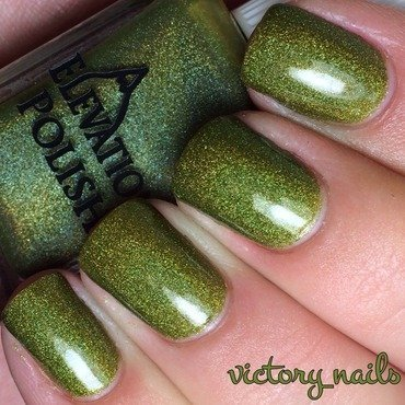 Elevation Polish Epitode Swatch by Nicole