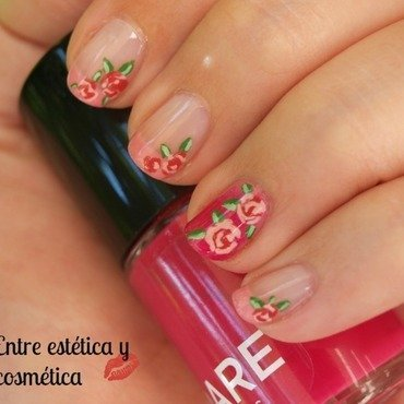 Rosa1 thumb370f