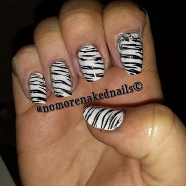 zebra nail art by nomorenakednails