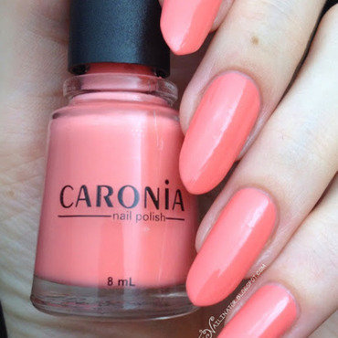 Caronia Pique Swatch by Rachael Robinstein