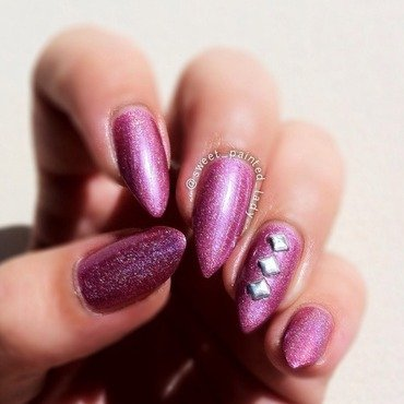 polish pet victor Swatch by Stacey Lee  Warren