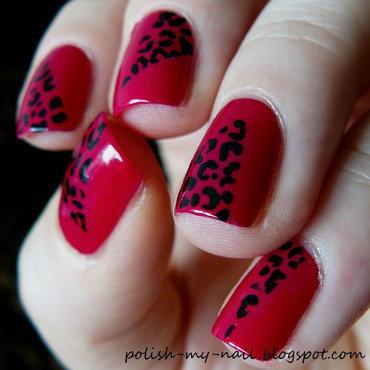 Rimmer guest star   leopard  3 thumb370f