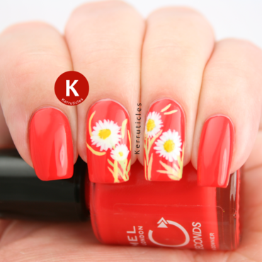 Freehand 20daisies 20on 20orange red 20ig thumb370f