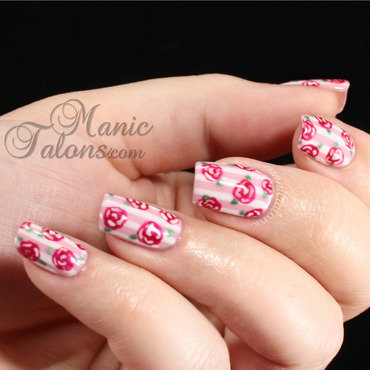 Ibd stripes and roses full thumb370f