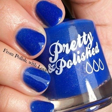 Pretty & Polished Zack Swatch by Dani