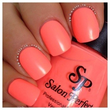 Flamingo fair by salonperfect thumb370f