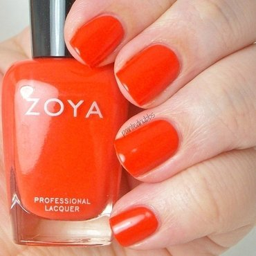 Zoya Rocha Swatch by Ashlee