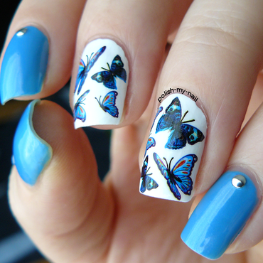 Blue butterflies nail art 1 thumb370f