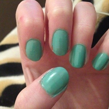 Barry M - Mint Green by Kelly Greenwood