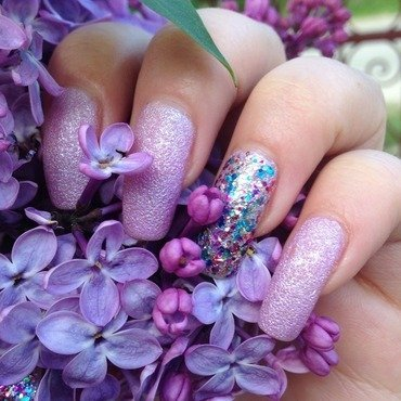 Spring purple flowers by Sparkle  And Love