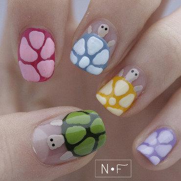 Disco turtles thumb370f