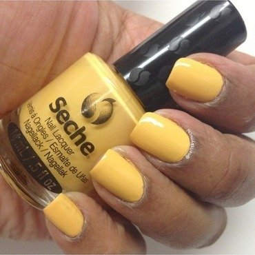 Seche Prefectly Poised Swatch by Michi J