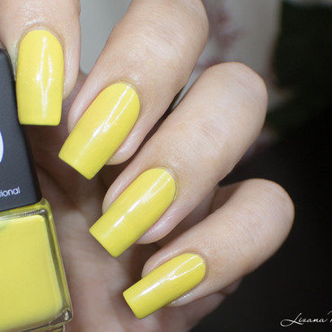 Lmcosmetic   castelao   collection brasil  1  thumb370f