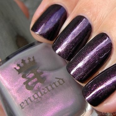 A England Hurt No Living Thing Swatch by nihrida