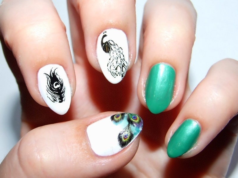 Peacock nail art by Paulina Domoradzka