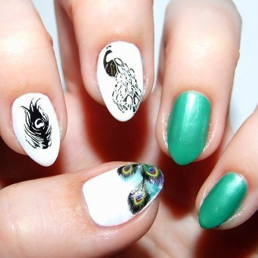 Peacock nail art by Paulina Domoradzka
