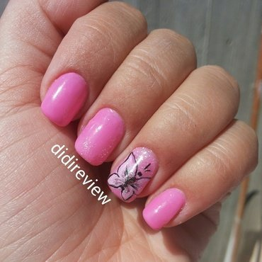 butterfly nails  nail art by Didi didireview