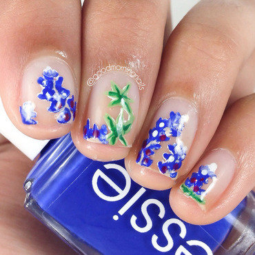 Bluebonnets thumb370f