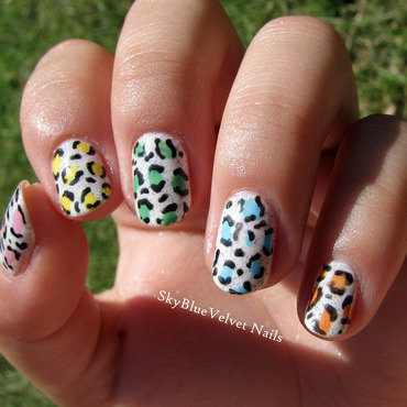 Colorful leopard print nail art by Sky Blue Velvet Nails