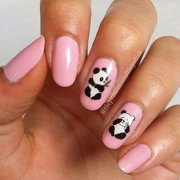 Pink 20pandas thumb370f