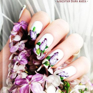Lilac 204 thumb370f
