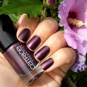 Catrice First Class Up-Grape Swatch by nihrida