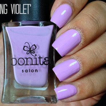 Spring 20violet2 thumb370f