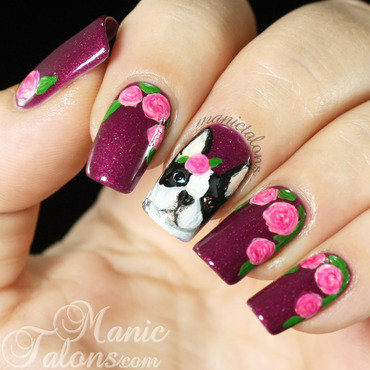 Boston Terrier and Roses nail art by ManicTalons