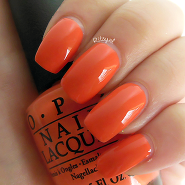 Opi can t afjord not to thumb370f