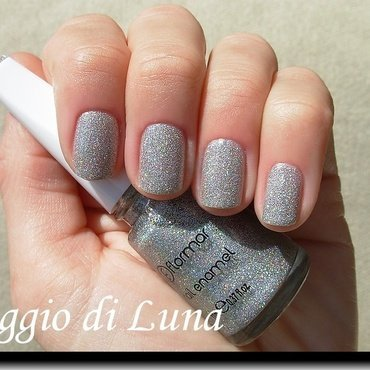 Flormar n° 392 Holographic Silver Swatch by Tanja