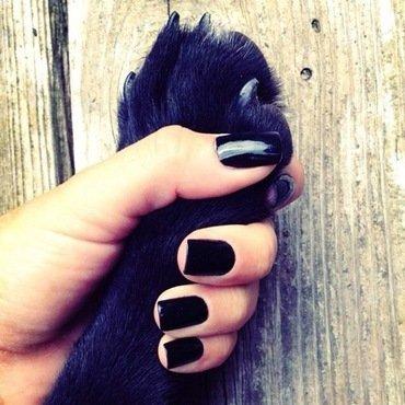 black lab. nail art by NAMInails