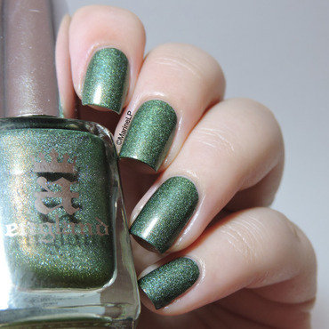 Dragon snakeskin nails 20 4  thumb370f