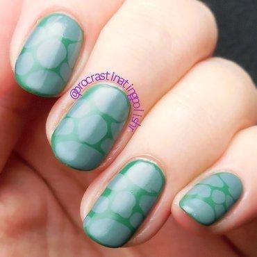 Turtle Shell  nail art by Jae Harrison