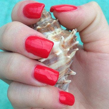 OPI Cajun Shrimp Swatch by Dana  Nicole
