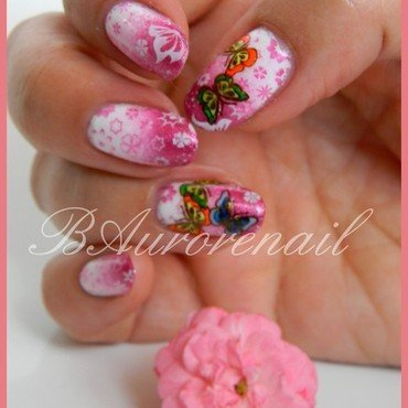 Degradé et papillon nail art by BAurorenail