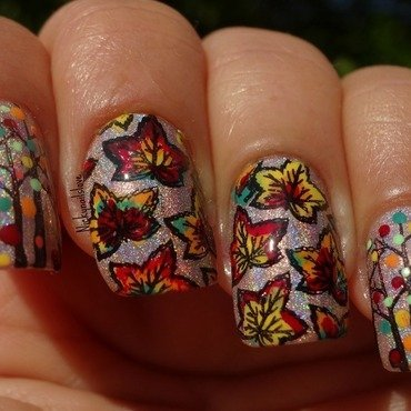 Colorfull Fall nail art by Nicky