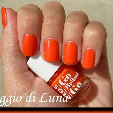 Etos Go Holland Go Swatch by Tanja