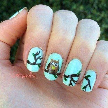 Owl nail art by Sandra