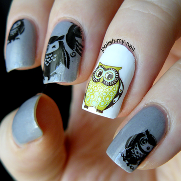 Owls 202 thumb370f